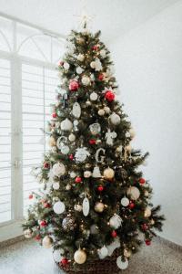 一大棵聖誕樹,節日後要怎樣收藏?