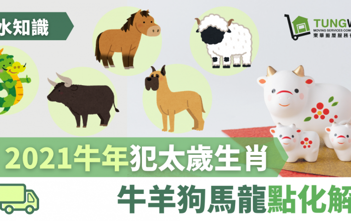 【風水知識】2021牛年犯太歲生肖 牛羊狗馬龍可以點樣化解?