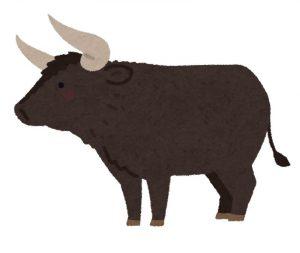屬牛是本命年太歲。